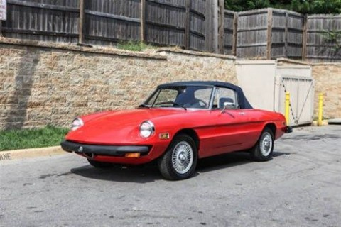 1978 Alfa Romeo Spider for sale