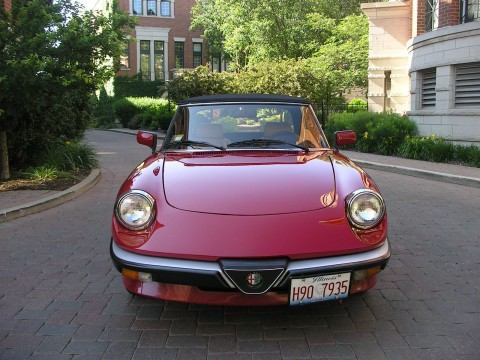 1986 Alfa Romeo Spider Veloce Convertible for sale