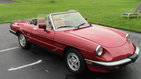 1990 Alfa Romeo Spider for sale