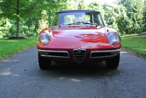 1967 Alfa Romeo Spider for sale