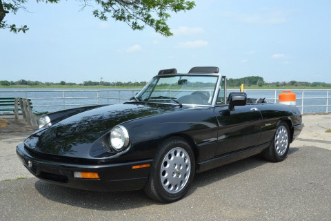 1992 Alfa Romeo Spider for sale