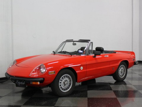 1978 Alfa Romeo Spider Niki Lauda for sale
