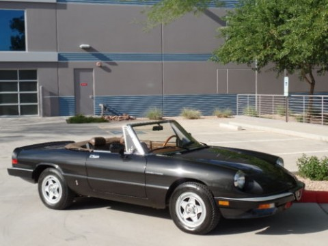 1984 Alfa Romeo Spider Graduate Spider Veloce Convertible for sale