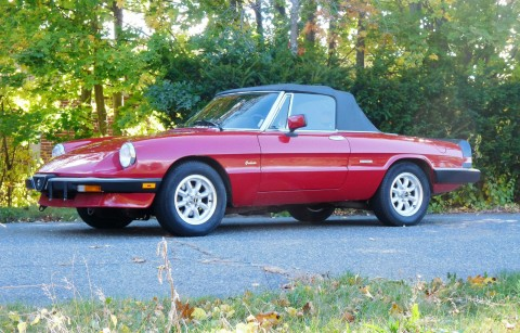 1989 Alfa Romeo Spider Graduate Convertible 2 Door 2.0L for sale