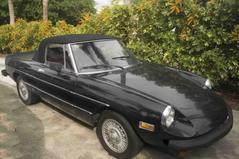 1978 Alfa Romeo Spider Veloce Convertible 2 Door 2.0L for sale