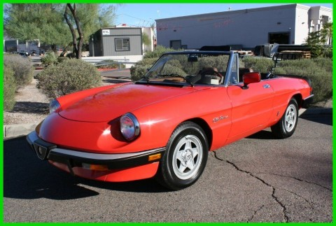 1984 Alfa Romeo 2000 Spider for sale