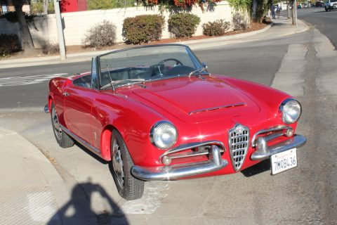 1964 Alfa Romeo Giulia (Giulietta) Spider for sale