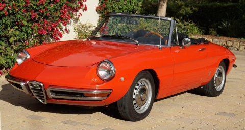 1969 Alfa Romeo for sale