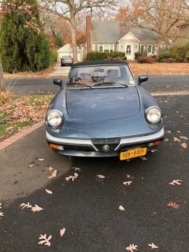 GREAT 1987 Alfa Romeo Spider for sale