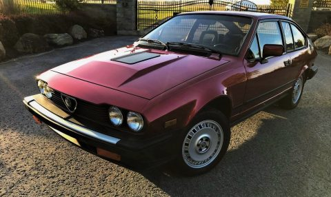 SUPER NICE 1984 Alfa Romeo GTV for sale