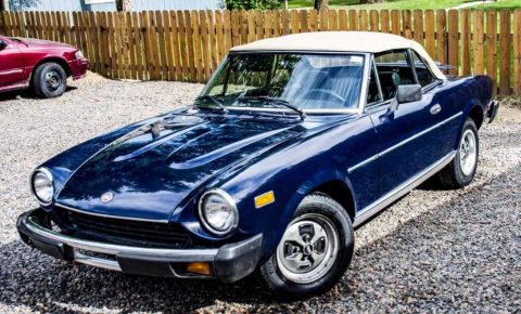 BEAUTIFUL 1979 Fiat 124 Spider for sale
