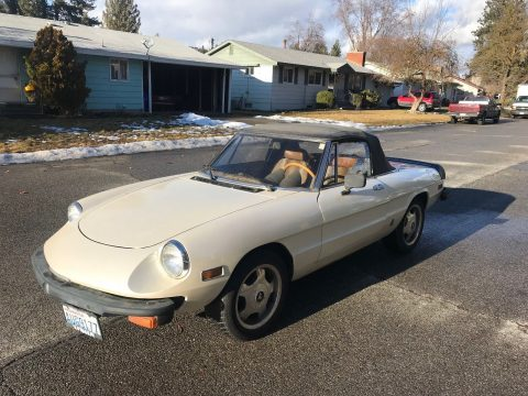GREAT 1982 Alfa Romeo Spider for sale